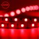 Cветодиодная лента LEDOKS PS-5050-300R-IP33