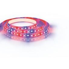 Cветодиодная LED лента LS670, 120SMD(2835)/м 9.6Вт/м 5м IP65 12V для растений