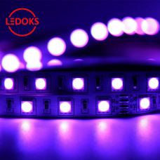 Cветодиодная лента LEDOKS PS-5050-300P-IP33