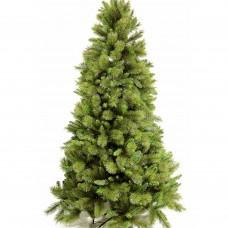 Ель ROCKY RIDGE Pine