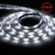 Cветодиодная LED лента LS607, 30SMD(5050)/м 7.2Вт/м 5м IP65 12V 6500К