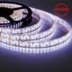 Cветодиодная LED лента LS615, 240SMD(3528)/м 19.2Вт/м 5м IP65 12V 6500К
